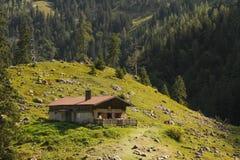 Halna chałupa na zielonej pokojowej łące w doliny Austria alps Alm fotografia stock