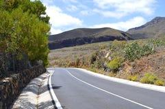 Halna droga do góry Teide w Tenerife Obrazy Royalty Free