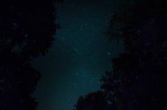 Halna droga przez lasu na księżyc w pełni nocy Sceniczny noc krajobraz zmrok - niebieskie niebo z księżyc Azerbejdżan Tęsk żaluzj Fotografia Stock
