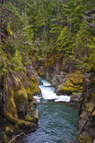 Halna droga wodna z drzewami i skałami Fotografia Stock