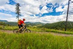 Halna jechać na rowerze mężczyzna jazda w drewnach i górach Zdjęcia Stock
