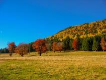 Halna jesień Zdjęcie Stock