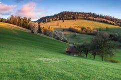 Halna łąka Zdjęcie Royalty Free
