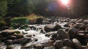 Halna Lasowa rzeka zbiory wideo