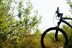 halna rower sylwetka Fotografia Royalty Free