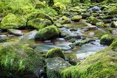 Halna rzeka Fotografia Royalty Free