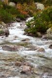 Halna rzeka Fotografia Stock