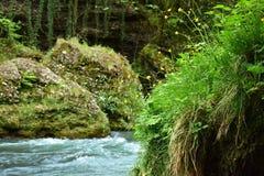 Halna rzeka i bolders Zdjęcia Royalty Free