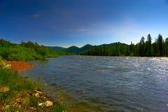 Halna rzeka i drewno Zdjęcia Royalty Free