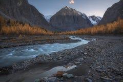 Halna rzeka na tle jesień las, śnieg nakrywał góry i niebieskie niebo Obraz Royalty Free