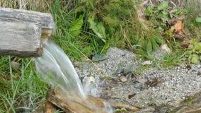 Halna rzeka płynie z drewnianej synkliny Czysty halny strumień z jasną wodą płynie przez zielonego terenu zbiory wideo