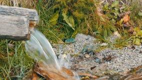 Halna rzeka płynie z drewnianej synkliny Czysty halny strumień z jasną wodą płynie przez zielonego terenu zbiory