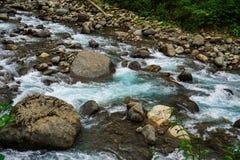 Halna rzeka wścieka się na skałach na chmurnym dniu zdjęcie stock