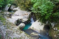 Halna rzeka w jarze po środku zielonego lasu, kamienie zakrywający z mech Fotografia Royalty Free