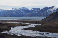 Halna rzeka w Laguna De Laja parku narodowym, Chile zdjęcie royalty free