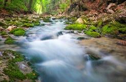 Halna rzeka w lasowym i halnym terenie Fotografia Royalty Free