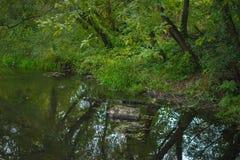 Halna rzeka w lesie Obrazy Royalty Free