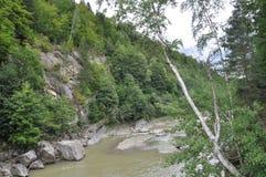 Halna rzeka w lesie Zdjęcia Royalty Free