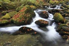 Halna rzeka w opóźnionej jesieni obrazy stock