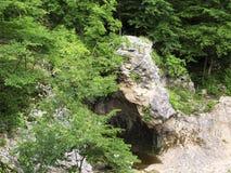 Halna rzeka w wąwozie Obraz Stock