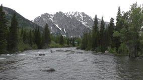 Halna rzeka w Wyoming zdjęcie wideo