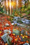 Halna rzeka z gwałtownymi i siklawami przy jesień czasu czasem Zdjęcie Stock