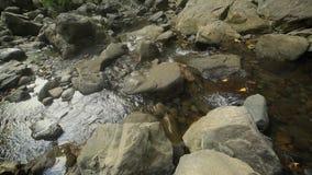 Halna rzeka z kryształem - jasna woda, turystyka zbiory wideo