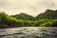 Halna rzeka z zielonym lasem na Kamchatka, Rosja Zdjęcia Stock