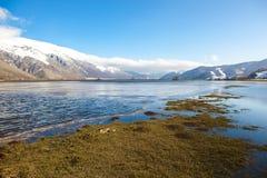Halna sceneria z zimnym jeziorem Fotografia Royalty Free