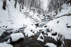 Halna siklawa przy zimą Karpackie góry, ukraine Zdjęcia Stock
