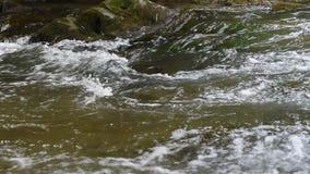 Halna strumień rzeka z gwałtownymi zbiory