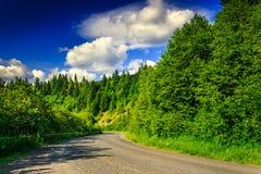 Halna trasa przez sosnowego lasu na lato wieczór horizonta Fotografia Royalty Free