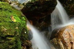 Halna wiosny woda Obrazy Stock