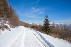halna zima Fotografia Stock