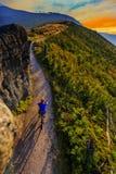 Halne jechać na rowerze kobiety jedzie na rowerze w lato górach lasowych Zdjęcia Stock
