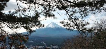 Halnego Fuji krajobrazu, Japonia punkt zwrotny Zdjęcia Royalty Free