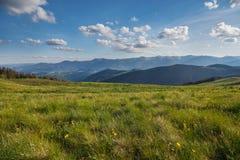 Halnego lata panoramiczny krajobraz z niebieskim niebem i chmurami zdjęcie stock