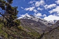 Halnego szczytu jasny dzień z zieleniami i śniegiem Zdjęcie Stock