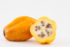 Halni melonowa Vasconcellea pubescens zdjęcie royalty free