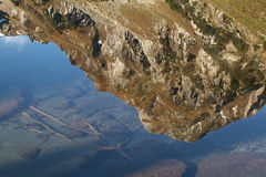 halni Pyrenees obraz stock