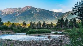 Halni rzeczni i lasowi drzewa na zmierzchu, Altai góry, Kazachstan Zdjęcie Royalty Free