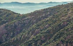 Halni skłony i faraway błękitne góry fotografia royalty free