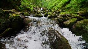 Halni strumieni przepływy zmniejszający się z kaskadami zbiory wideo