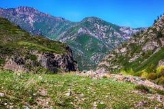 Halni szczyty Alatau kazakhstan zdjęcia royalty free