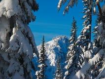 Halny Śnieg Fotografia Stock