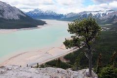 Halny Abraham Banff jeziorny park narodowy Canada Obraz Royalty Free
