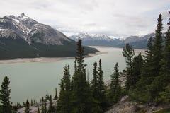 Halny Abraham Banff jeziorny park narodowy Canada Zdjęcie Royalty Free