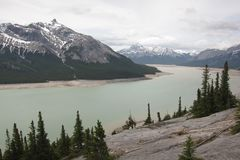 Halny Abraham Banff jeziorny park narodowy Canada Obraz Stock