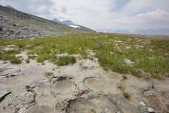 Halny Altai Krajobraz z kałużą i śladami kopyta Zdjęcia Royalty Free
