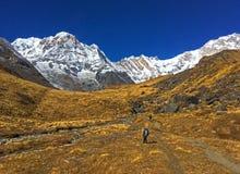 Halny Annapurna i Annapurna Podstawowy obóz zdjęcia stock